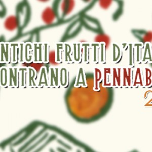 antichi-frutti-pennabilli