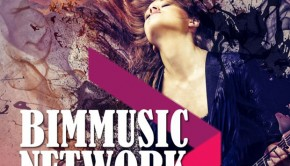 bim-music-festival
