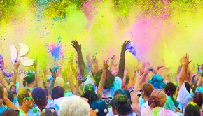 colorvibe