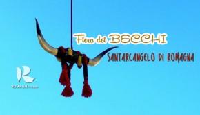 fieradeibecchi-2014