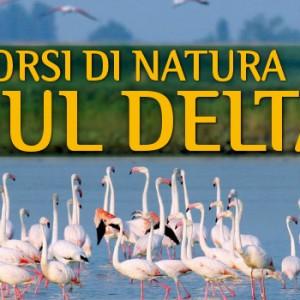 percorsi-di-natura-sul-delta