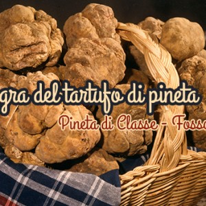 sagra-del-tartufo-di-pineta